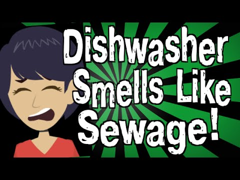 Why Does My Dishwasher Smell Like Sewage?