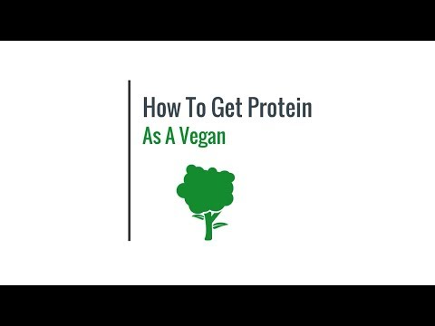 Hey Google, How To Get Enough Protein While Being On A Vegan Diet?