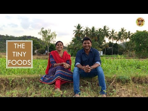Watch Us In Zee Tamil || The Tiny Foods