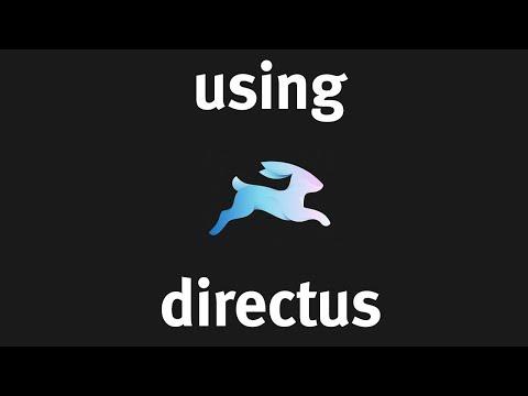Using Directus