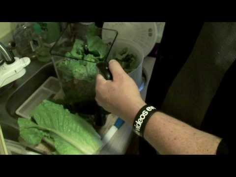 How to Cut Romaine Lettuce for Salads PLUS Composting & Regrowing