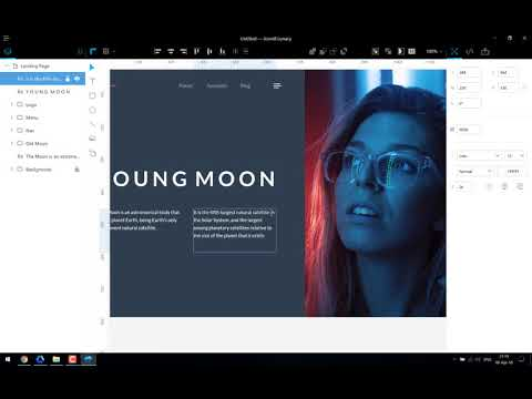 Icons8 Lunacy Editor - how it works