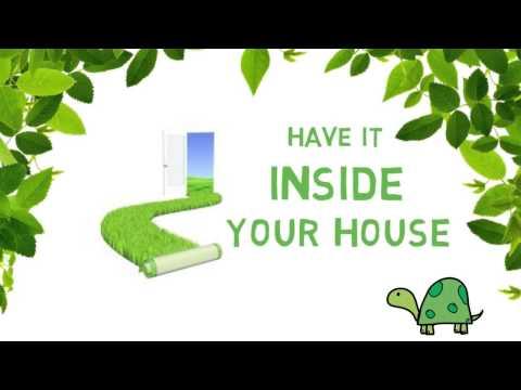Interior Design Ideas #18 : FLower bed, Mini Garden, Window Garden