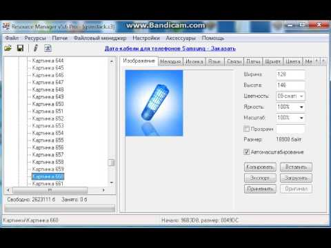 Extrating Samsung SGH-X450 firmware ringtones and pictures files