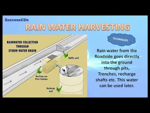 Importance of Water - CBSE NCERT Science