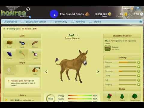 Cher180: All about Donkeys on Howrse