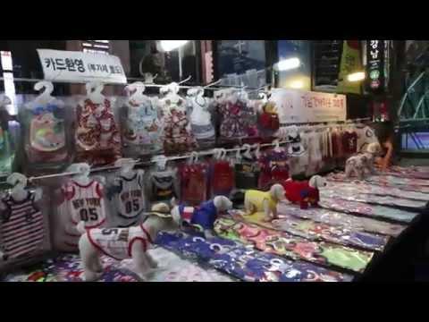 VLOG Corée 16 - Namdaemun market, MyeongDong et Gangnam !