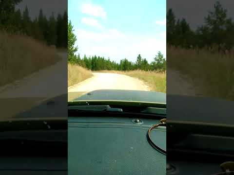Dash Cam Vid Moser Jump Off Camp to mini house VID 20170819 140210