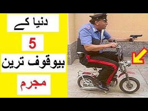 5  Bewakuf Tareen Mujrim -- 5  Dumbest Criminals