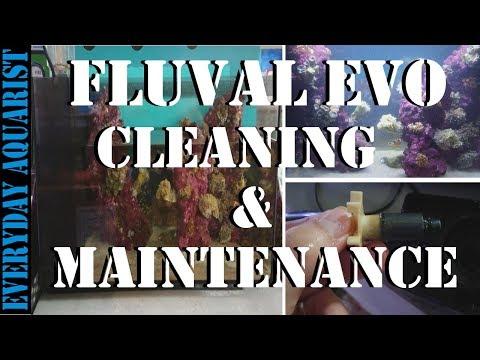 Fluval Evo Cleaning & Maintenance