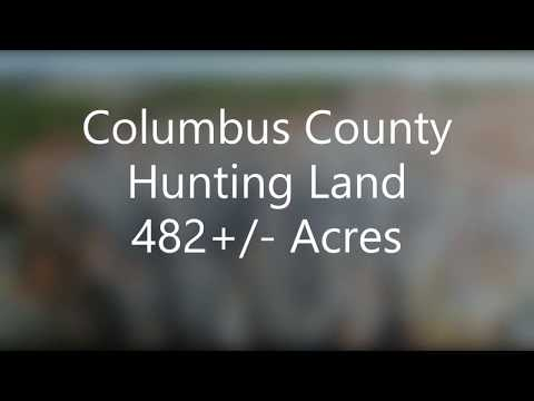 482 Acres of Hunting Land For Sale in Columbus County NC!