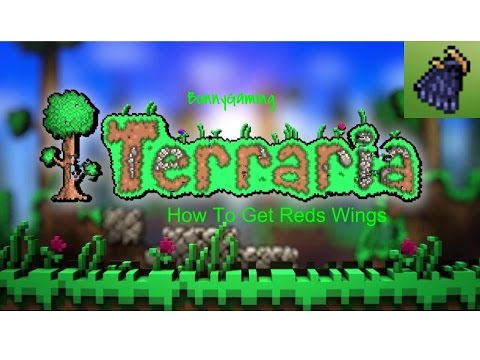 How to get reds wings in terraria| IOS