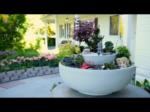 Zen Garden Full Version // Garden Answer