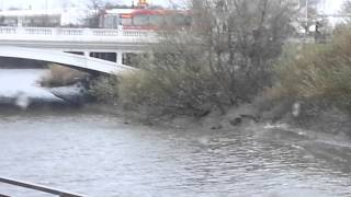 Tidal wave on the river Mersey Warrington