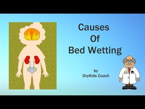 Causes of bed wetting