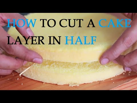 How to Cut a Cake Layer in Half