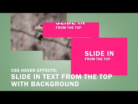CSS Hover Effects: Slide in Text from the Top with Background