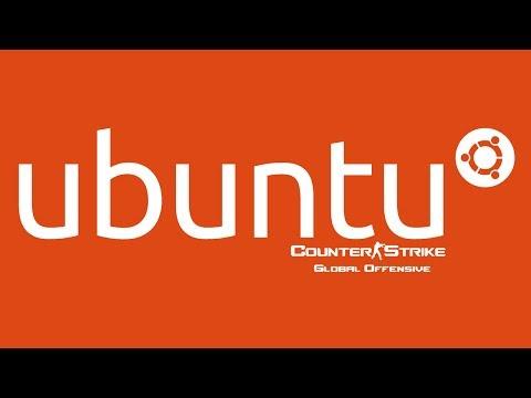 How to setup a Counter Strike Global Offensive CSGO Dedicated Server using Linux Ubuntu 64bit 14.04
