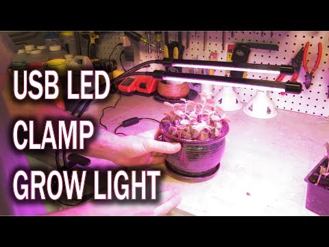 Benuo Taple Top Clamping Plant Light Review (Dimmable with Timer)