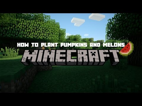 HOW TO PLANT PUMPKINS AND MELONS ON MCPE