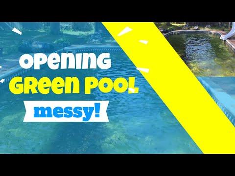 Opening Green Algae Swimming Pool