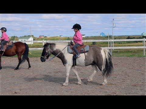 Iles-de-la-Madeleine 2017 - Horseback riding