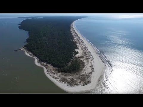 Florida Travel: Visit St. Vincent National Wildlife Refuge