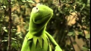 Muppets - Kermit - Its not easy being green (original)