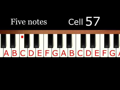 Learn to play piano by ear in 40 minutes. Relative pitch training.