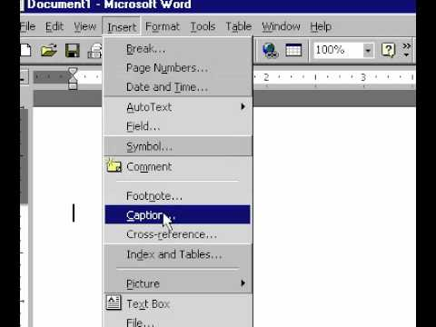 Microsoft Office Excel 2000 Embed worksheet into another application