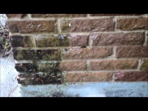 What you will need to Power Wash a Brick House-Please Subscribe