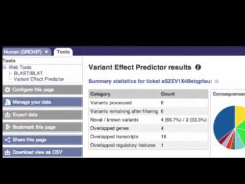 Analyse your  Sequence Variants  with the VEP (Web Interface)