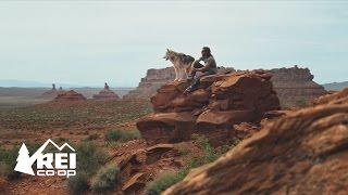 Camping with Loki the Wolfdog