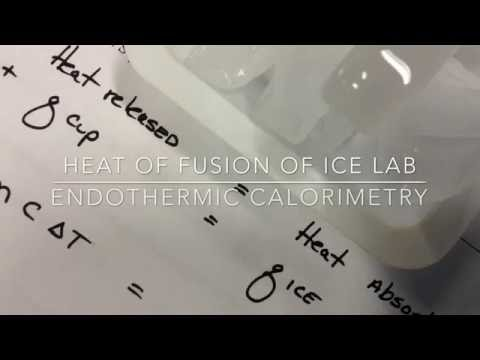 Heat Of Fusion of Water Lab
