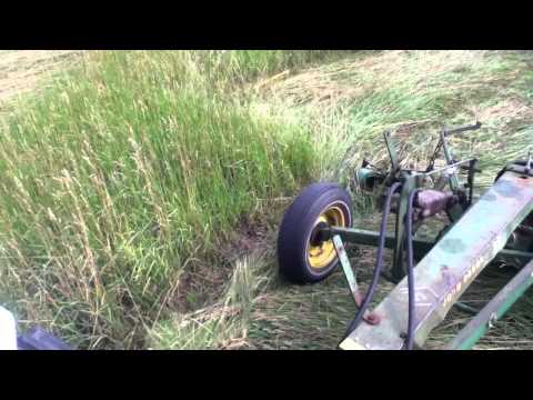 cutting hay with sickle mower