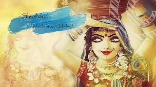 Mahabharatham Soundtracks | Draupadi Theme Song | Vaanai