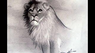 Como Desenhar O Leao Cecil How To Draw A Cecil Lion