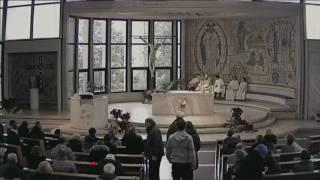 Santa Messa - 15 gennaio 2017