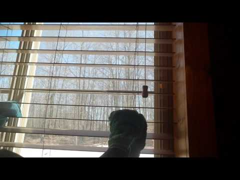 Cleaning window blinds with the Norwex Dust Mitt