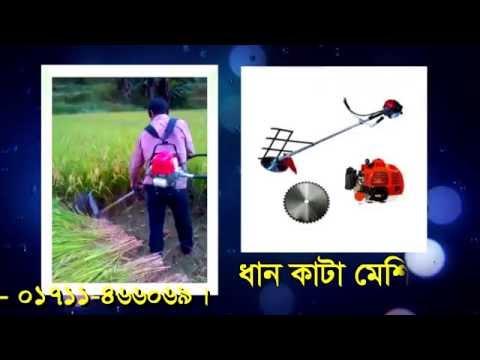Rice Cutter Machine in Babgladesh