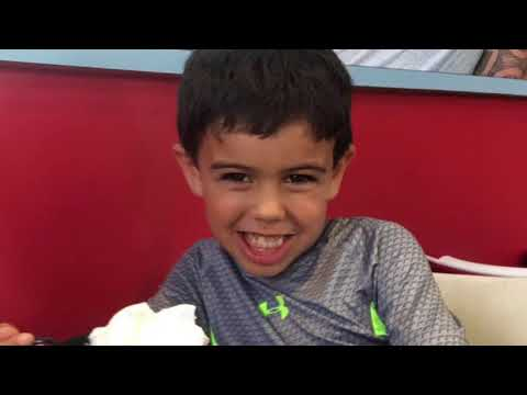 Surprise Disney World and Legoland Vacation 2017
