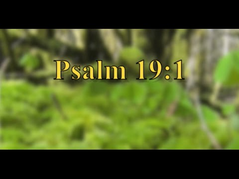 Daily Bible Verse - Psalm 19:1