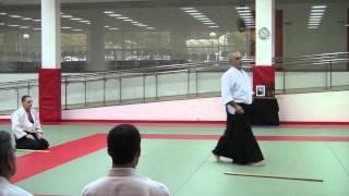 Entrenamiento Federativo Aikido 2011-05-11, Iñaki Sanchez