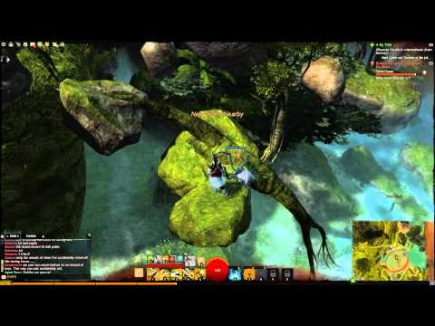 Guild Wars 2 - Caledon Forest - Morgan's Leap Puzzle Achievement