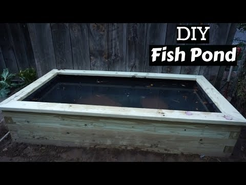 MY NEW FISH POND!! ~ DIY Backyard Fish Pond