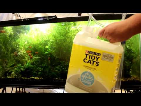 How to vacuum a fish tank correctly with a siphon vacuum!