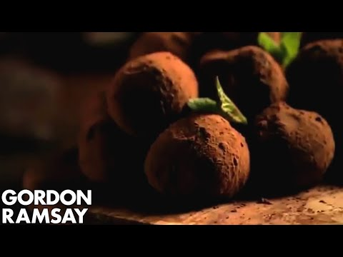 Hand-made Mint Chocolate Truffles (Part 1) - Gordon Ramsay