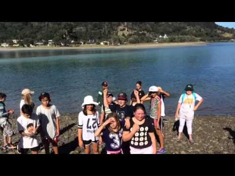 Wenderholme Outdoor Education 7 RBS 2015