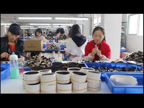 How to making the makeup brush ? #Chinacosmeticbrushfactory video