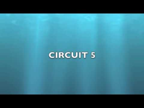 Electrical Circuits 5